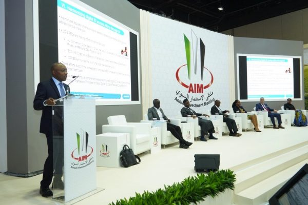 Unlocking Sustainable Investment in AFRICA