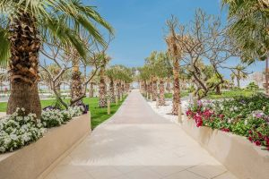 A Paw-some Summer Retreat for your   Furry Friends at Dhafra Beach Hotel